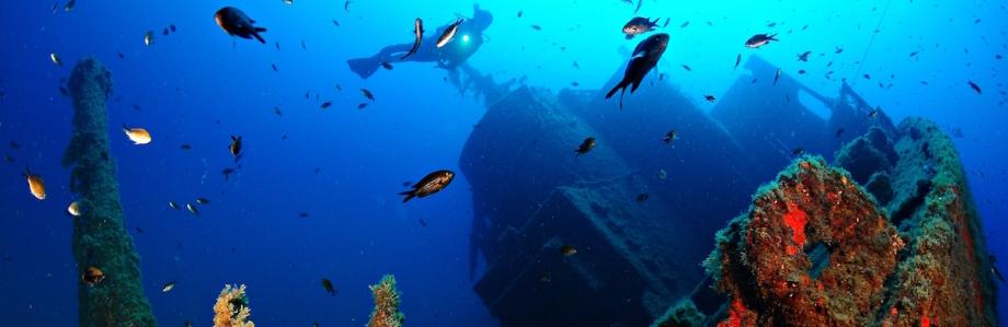 Inmersiones en Bahía de Palma