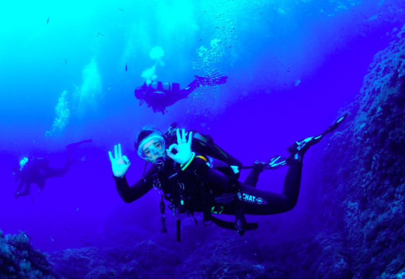 Diving in Mallorca and Cabrera Marine Reserve