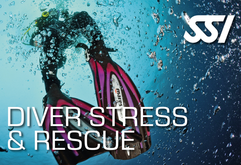 Book your PADI Rescue Diver course