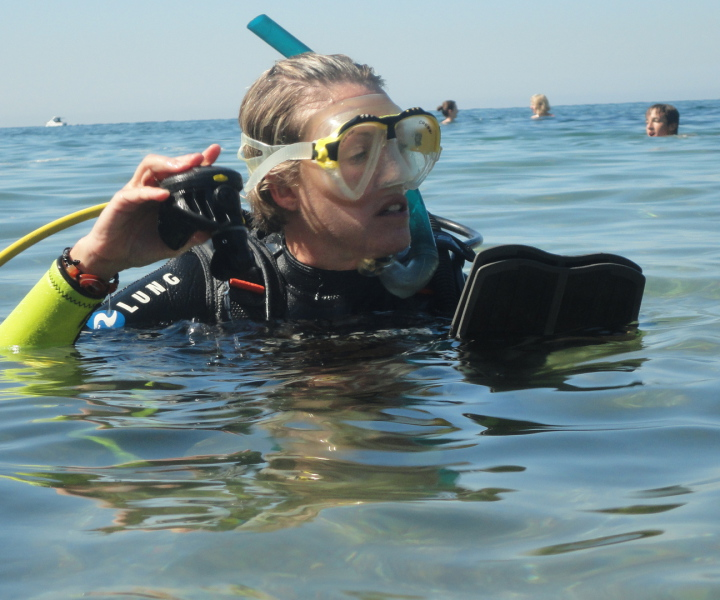 Try dives in Palma and Colonia de Sant Jordi