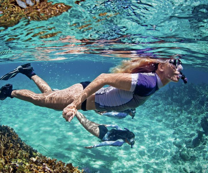 Excursión guiada de snorkel en barco medio día